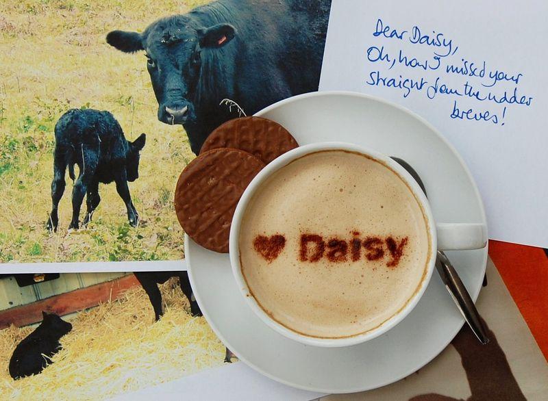 Daisybreve