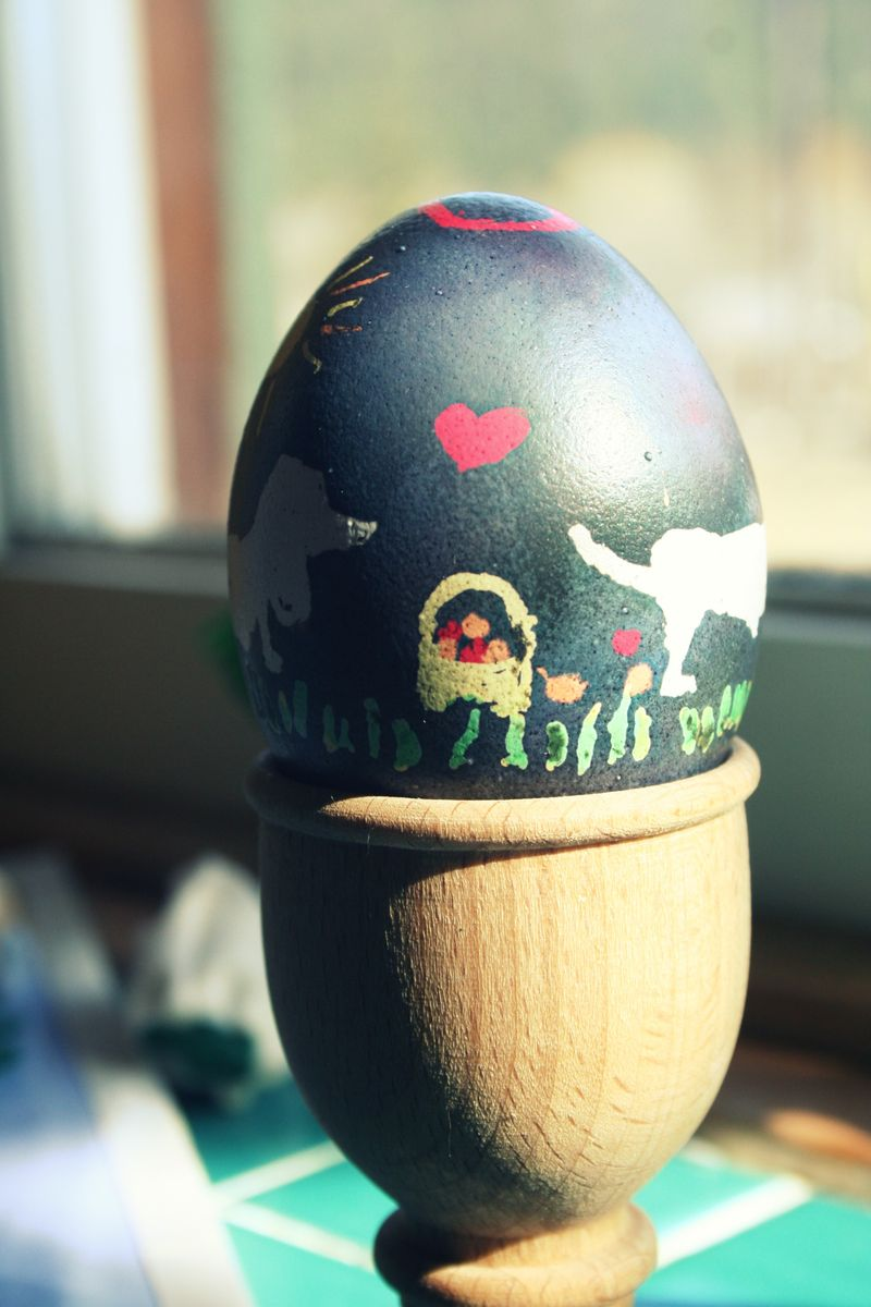Doxieegg3